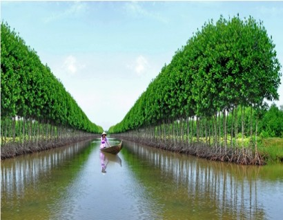 private car transfers from Ho Chi to Ca Mau Vietnam