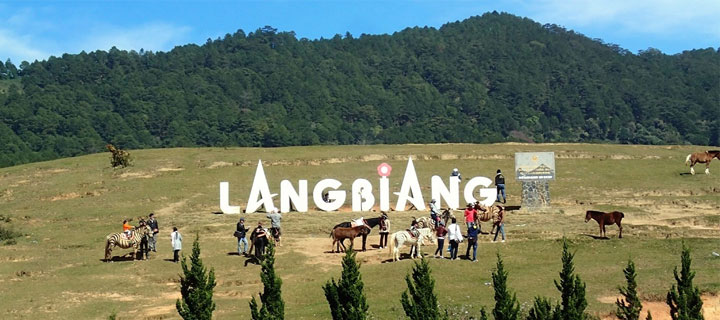 Rent A Car With English Speaking Driver In Dalat Vietnam