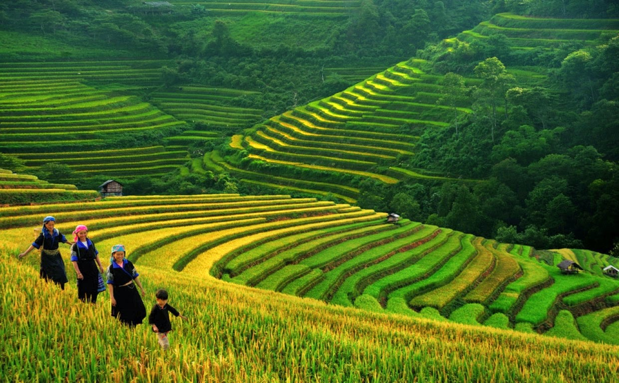 Private Car Transfers From Hanoi To Sapa - Budget Your Rentals