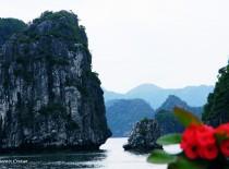 Car rental from Hanoi to Halong bay