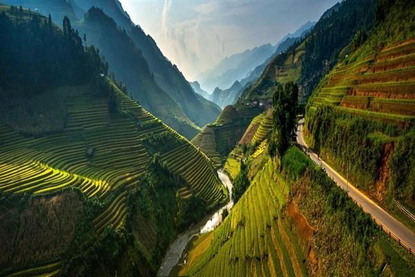 Mu_Cang_Chai_rice_field