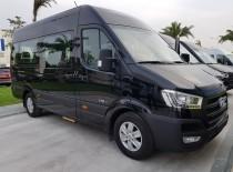 Limousine Solati Van 16 seat