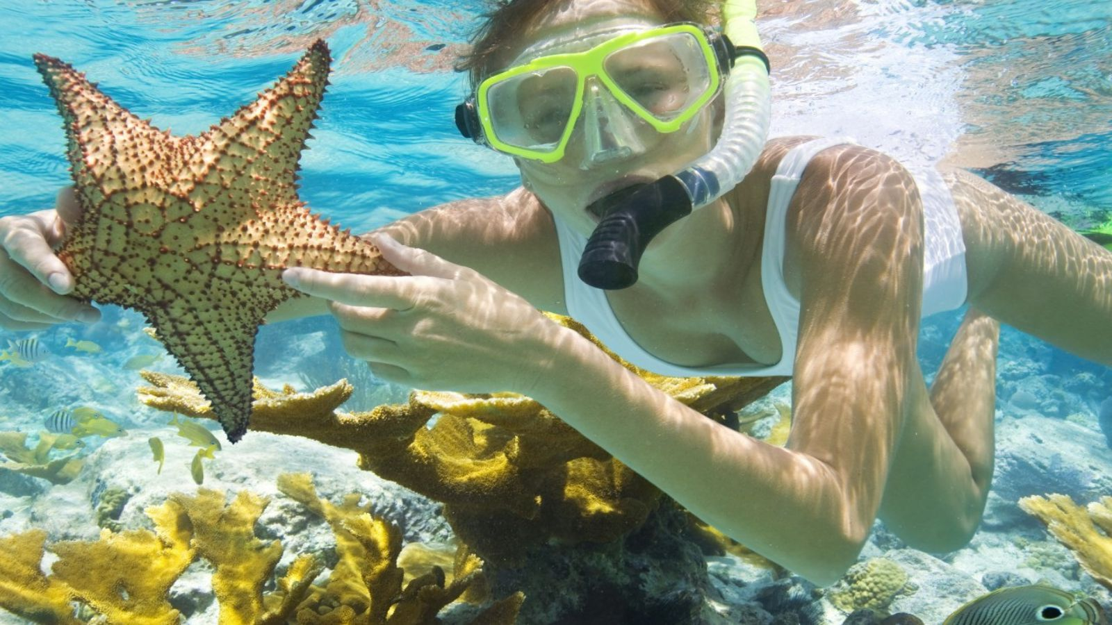South Phu Quoc Snorkeling And Fishing Tour A Day