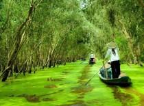 Mekong Delta Vietnam Tour, Cambodia Tour 6D5N