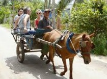 Mekong Delta Tour Cai Be Floating Market 1 Day From Ho Chi Minh